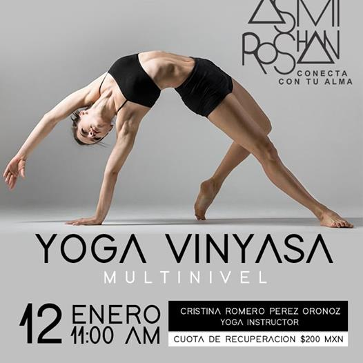 Yoga Vinyasa Multinivel