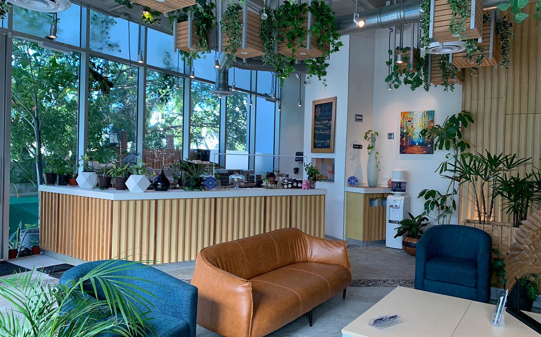 Cafetería Vegana Ashtan